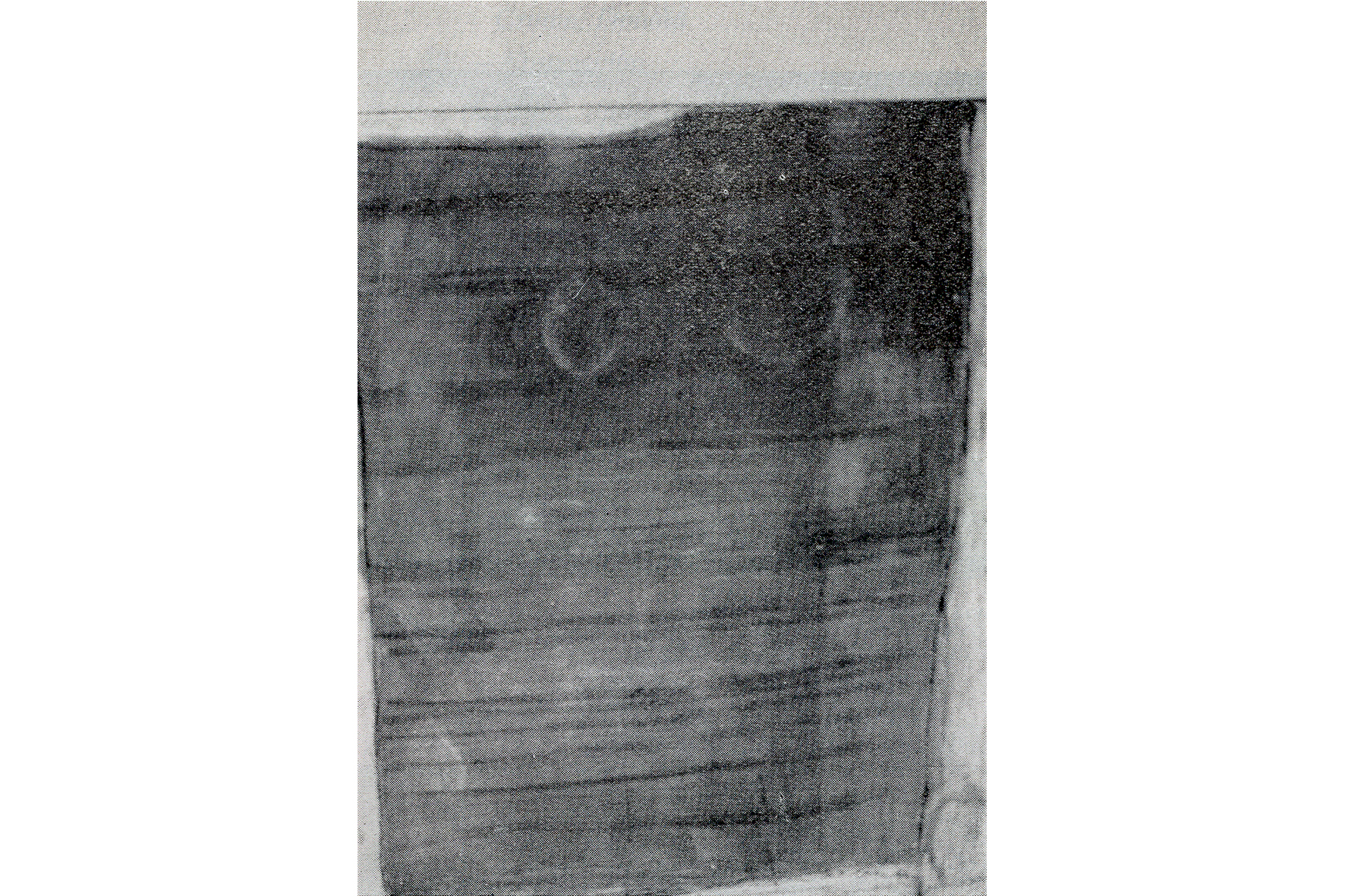 "Pintura Ocre. Rafael Tur Costa. ""Salón de Otoño, 1964"" Palma"